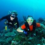 Keith Springer Underwater Dive