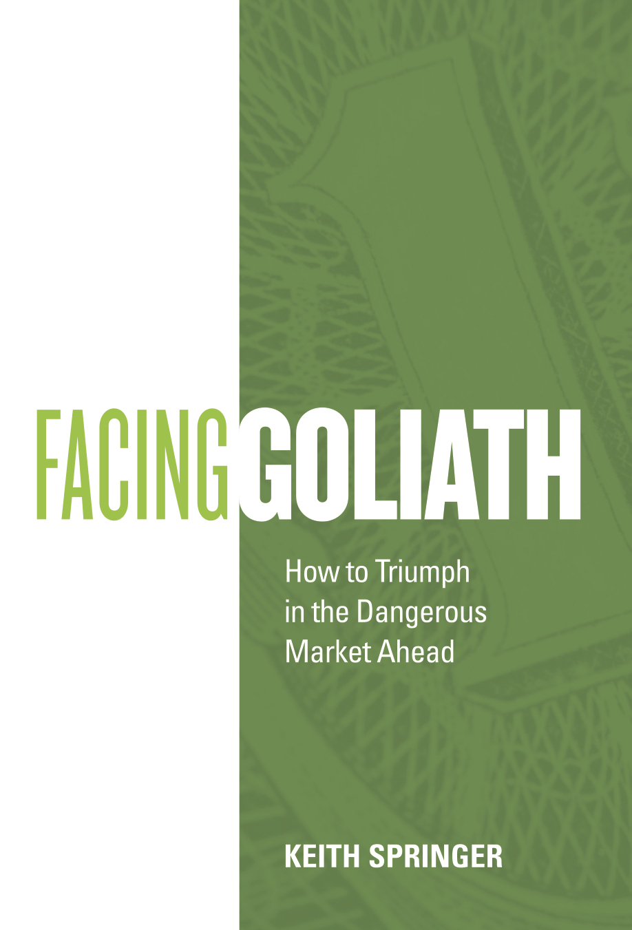 Facing Goliath_front cover artwork