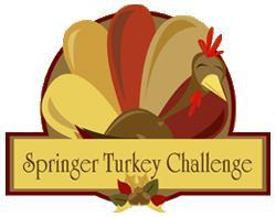 Springer Turkey Challenge